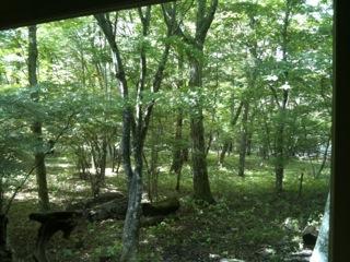 森の家10.10-3