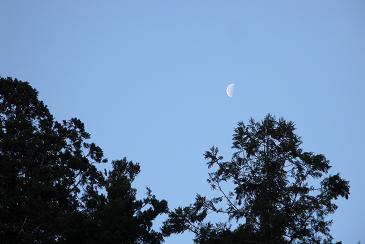 阿波忌部の月