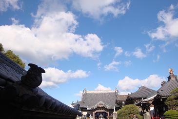 阿波忌部 お遍路の神社