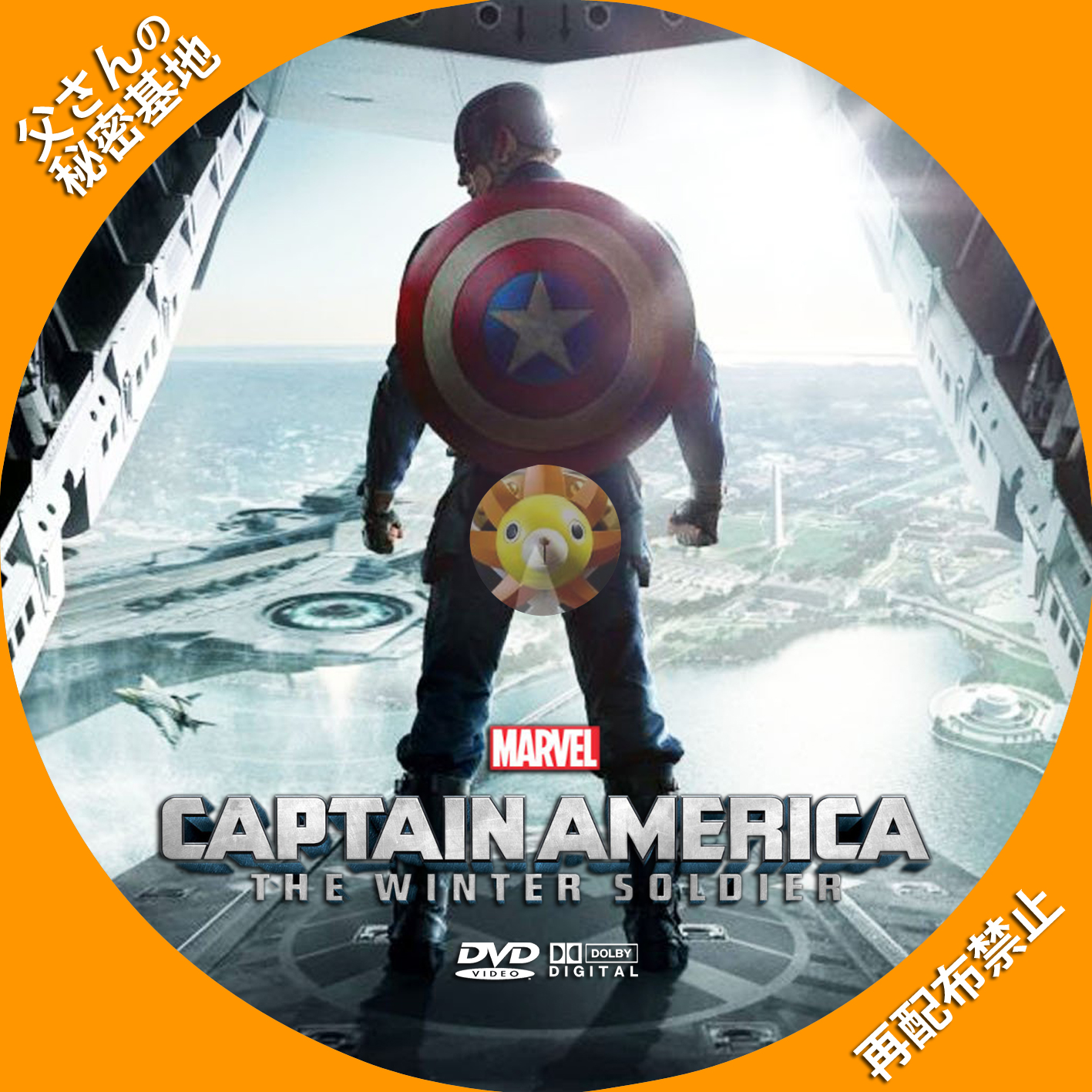 captain america the winter soldier_DVD_B