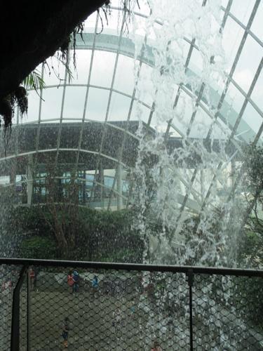 cloudforest3