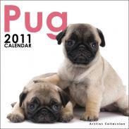パグ ミニカレンダー 2011