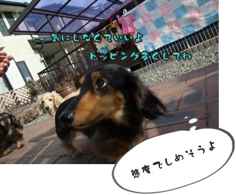 がんば053