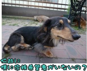 つみれトライアル新入生028