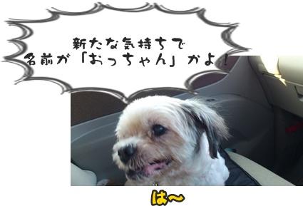 もさSDSC_0575