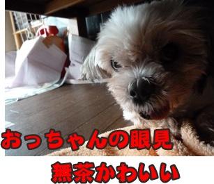 もさSおっちゃん003