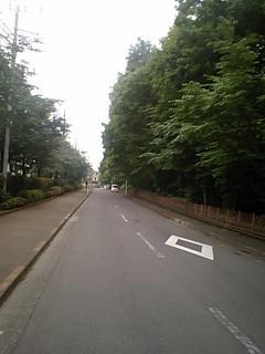 20100615玉川上水2.JPG
