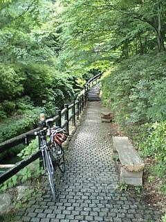 20100617都民の森.JPG