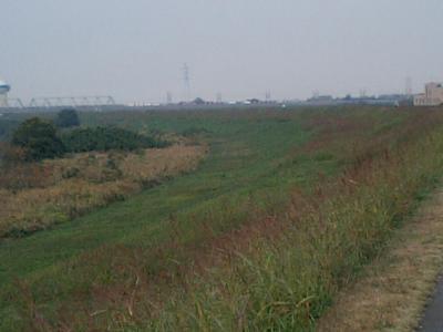 20101112彩湖.JPG