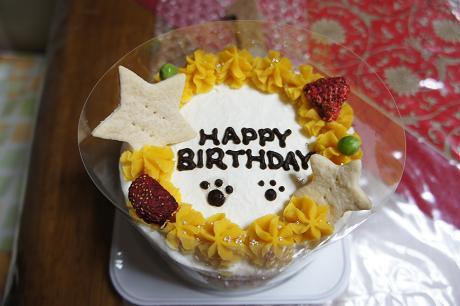こんなケーキです