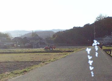 taro359.jpg