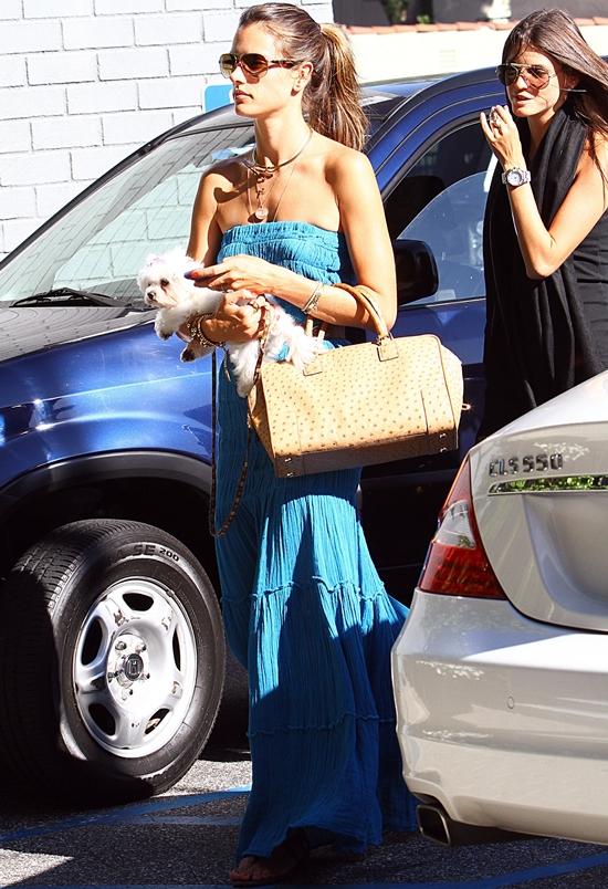 アレッサンドラ・アンブロシオ ブルーのマキシワンピで愛犬とお出かけ♪