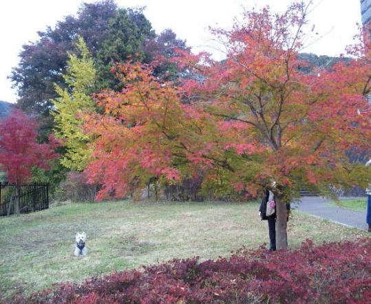 戸川公園1