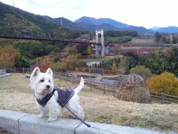 戸川公園9