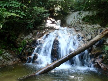 29 857綺麗な滝が続く