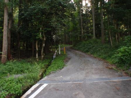 13 729前川林道