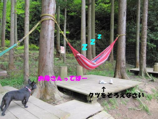 IMG_0502_convert_20100510101035ペイント済み