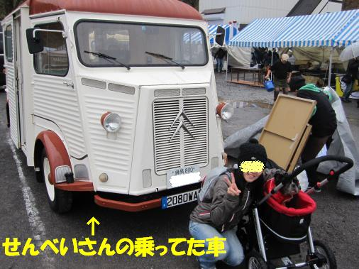 IMG_2401_convert_20101102155756ペイント