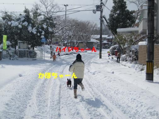 IMG_3331_convert_20110122095659ペイント
