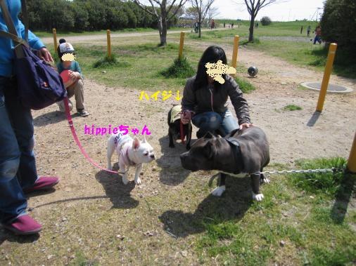 IMG_3711_convert_20110411104923ペイント