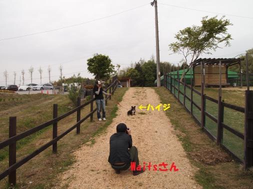 P5030084_convert_20110504134219ペイント