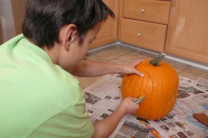 かぼちゃ種2