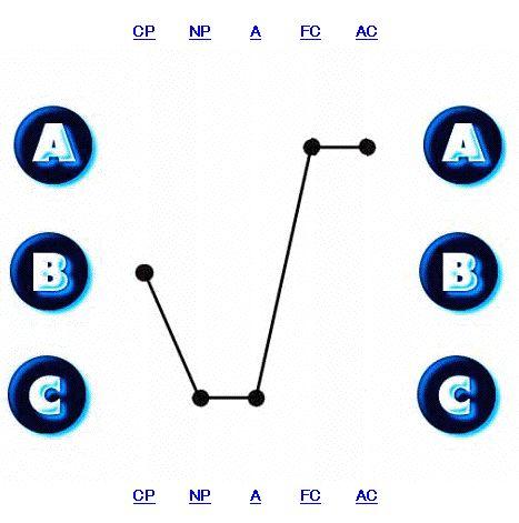 エゴグラム1.jpg