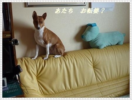 Ami子さんP1090851