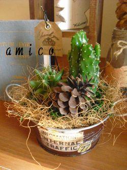 2012_0125_125841-CIMG1754.jpg