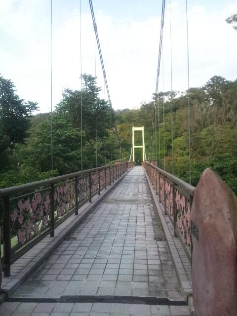 201305名護さくら橋