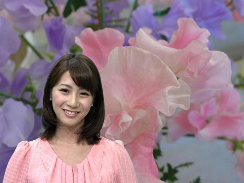 植田 萌子  ピンクのスイートピー