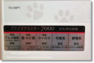 250315-3.jpg