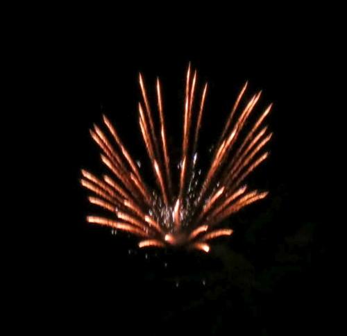 firework123112 (7)