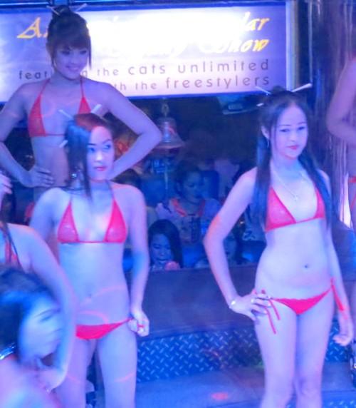 dh bikini020813 (79)