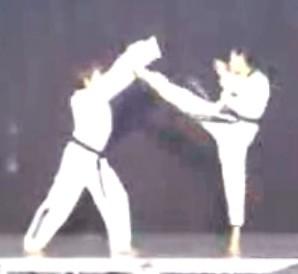 Danni Taekwondo demo