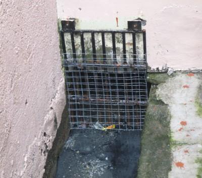 drain net080813 (3)