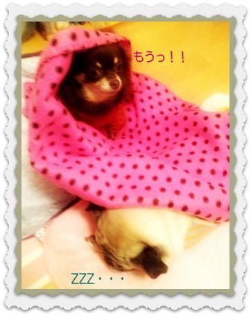 image4_20121027142155.jpg