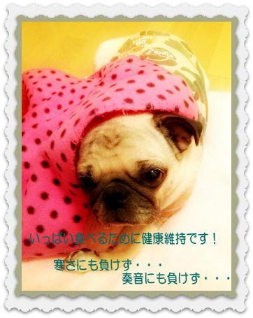 image7_20121027144024.jpg