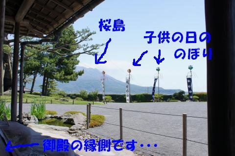 DSC00101_convert_20110510125449.jpg