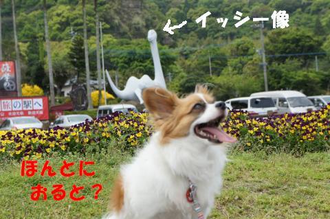 DSC00214_convert_20110510125347.jpg