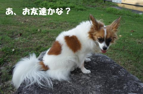 DSC00789_convert_20110901092707.jpg