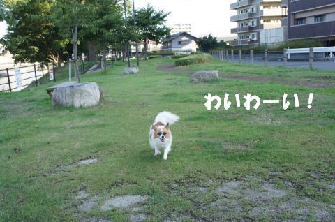 DSC00791_convert_20110901092559.jpg