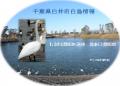 千葉県白井市白鳥情報