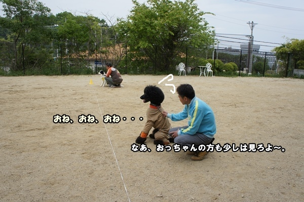 DSC0082620130508.jpg