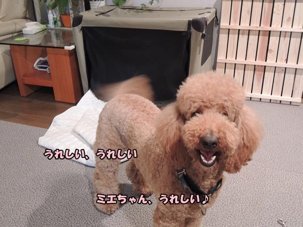 DSCN077420130518.jpg