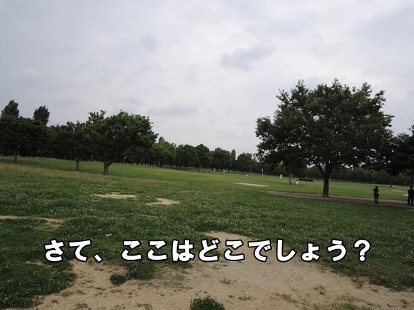 DSCN244820130712.jpg
