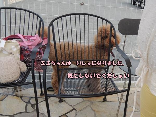 DSCN282320130716.jpg