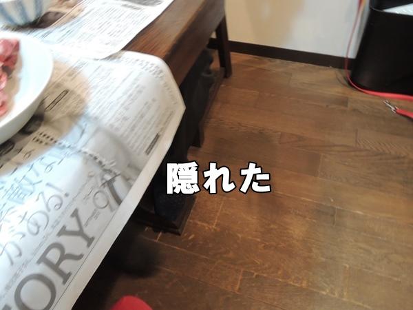 DSCN364620130801.jpg