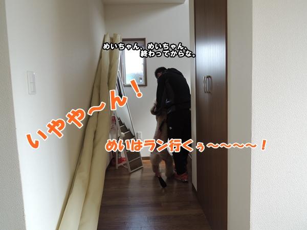 DSCN377920130805.jpg