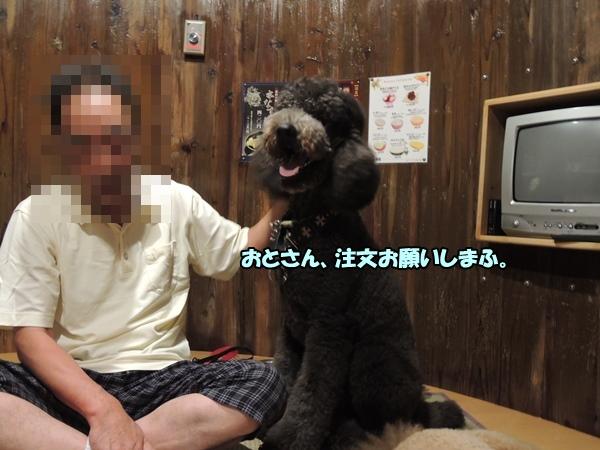 DSCN433620130816.jpg